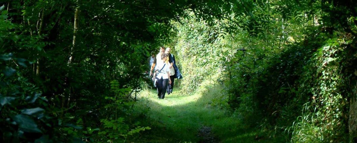 Visitors take a tour along a quiet broad grassy path amidst trees in Arnos Vale