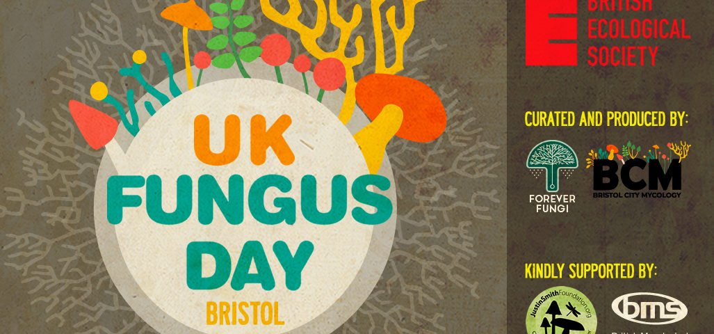 UK Fungus Day poster