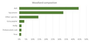 Woodland composition graph