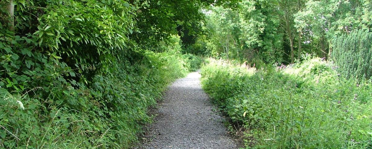 A path at Arnos Vale