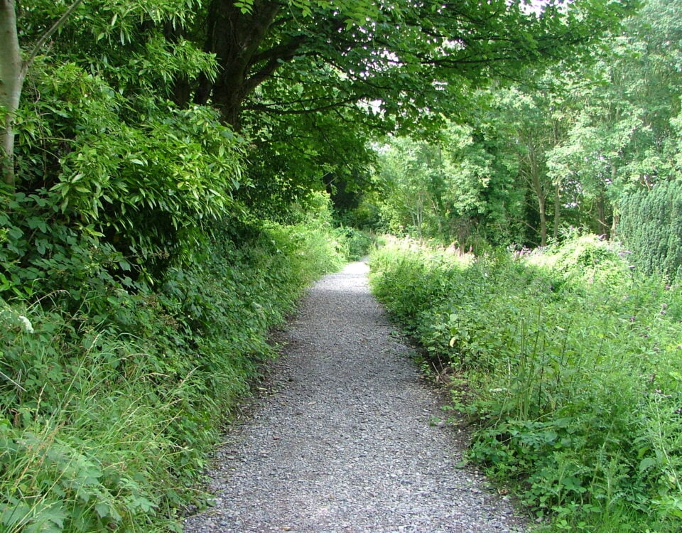 A path at Arnos Vale